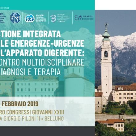 Gestione Integrata delle Emergenze -Urgenze dell'Apparato Digerente: Incontro Multidisciplinare di Diagnosi e Terapia – Belluno  14/15 Febbraio 2019