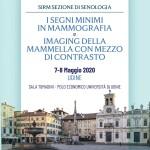 I Segni Minimi in Mammografia e Imaging della Mammella con Mezzo di Contrasto
